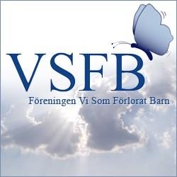 VSFB 250X250.jpg