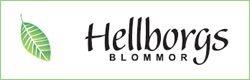Hellborgs blommor 250×80
